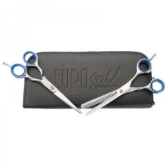 Eurostil Academia Case 2 Microdent Shine Scissors